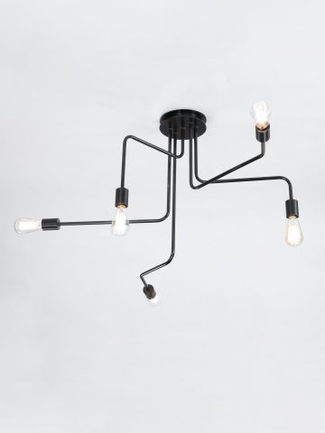 Five Arm Ceiling Mounted Light by Seth Stein