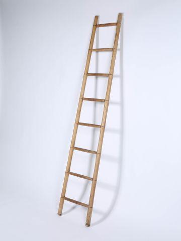 Edwardian Turned Ash Library Ladder