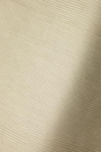 Silk in Furrow