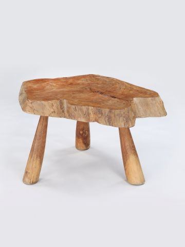 Large Elm Sectional Trunk Table