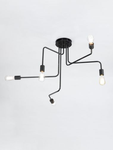 Five Arm Ceiling Mounted Light by Seth Stein_0