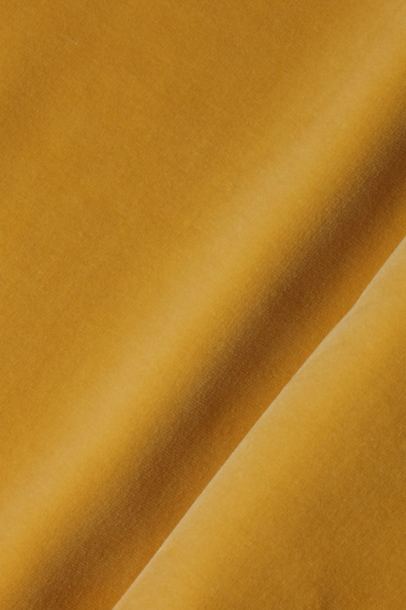 Cotton Velvet in Butternut_0