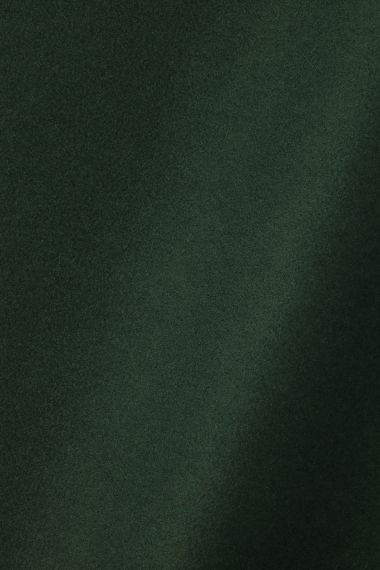Wool in Conifer_0